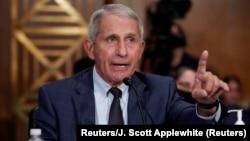 Pakar penyakit menular AS, Dr. Anthony Fauci