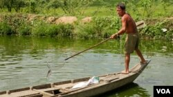 A fisherman catches a fish in Peamror district, Prey Veng province, Cambodia, on July 22, 2020. (Aun Chhengpor/VOA Khmer)