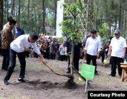 Jokowi menanam pohon Pulai di Jurangjero, Srumbung, Magelang, Jawa Tengah, kawasan Nasional Gunung Merapi (TNGM), 14 Februari 2020. (foto: courtesy: setkab.go.id)