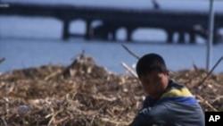 식량을 구하러 다니는 북한 소년 (자료사진)