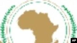 União Africana: Peritos Americanos Questionam Eficácia