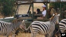 Ibu negara AS, Melania Trump mengamati kawanan zebra saat wisata safari di Taman Nasional Nairobi, Kenya (foto: dok).