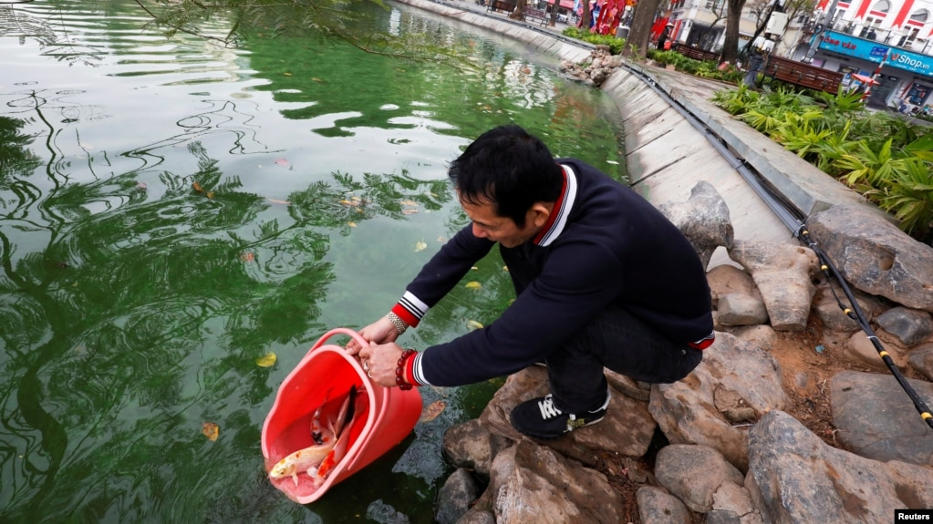 A man releases carps to Hoan Kiem lake on Kitchen God's Day as part of the traditional Vietnamese Lunar New Year celebrations, the biggest festival of the year in Hanoi, Vietnam February 4, 2021. (REUTERS/Kham)