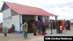IOM delivers emergency and essential health services to Bulla Gaduud and Gobweyn, areas recently liberated by the government in Lower Juba region of south-eastern Somalia.
