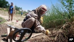FILE - A de-miner of the Halo Trust, a British charity that specialize in the removal of land mines, searches for mines in Bagram, north of Kabul, Afghanistan.