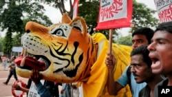 Para pemrotes Bangladesh memegang plakat dan patung harimau menentang rencana pembangunan pembangkit listrik Rampal di dekat monumen Shaheed Minar di Dhaka, Bangladesh, 20 Agustus, 2016. (AP Photo/A.M.Ahad)