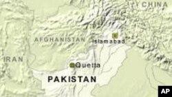 پاکستان کرکٹ ٹیم کے کچھ کھلاڑی اور ٹیم منیجر میچ فکسنگ میں ملوث تھے: سینیٹ قائمہ کمیٹی