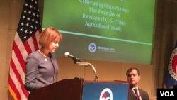 美國貿易代表辦公室首席農業談判代表維特大使在美國全國商會發表講話。(美國之音莉雅拍攝)