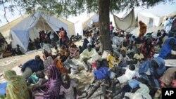 Des déplacés près de Kadugli, capitale du Sud-Kordofan