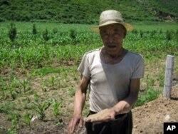 农民爱土地