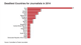 Deadliest Countries for Journalists in 2014