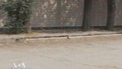 Талибан атаковал посольский район Кабула