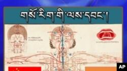 Tibetan Medicine: a Brief Prognosis