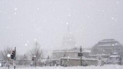 مناطقی از شرق آمریکا زیر بارش سنگین برف قرار گرفته است
