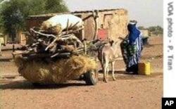 Scène de rue dans un village mauritanien (Archives)