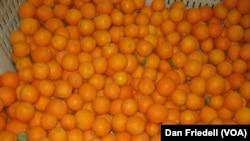 在加州雷德兰兹用来酿制飞机库24(Hangar 24)精酿橙麦啤酒的当地柑橘。(资料照)