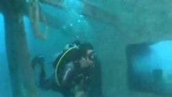 Arte submarino