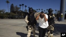 Drug War Collapsing Cartel