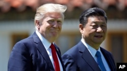 FILE - President Donald Trump and Chinese President Xi Jinping walk together after their meetings at Mar-a-Lago, April 7, 2017, in Palm Beach, Florida.