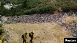 美国林野消防队员撤离亚内尔山火