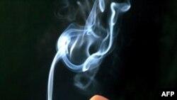 რა კავშირია სიგარეტის მოწევას და ტუბერკულოზს შორის?