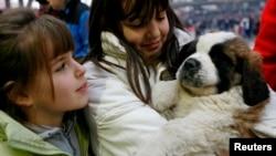 Penyuka anjing bisa meminjam anjing untuk waktu singkat dengan aplikasi baru (foto: ilustrasi).