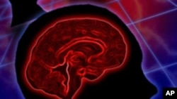 วัคซีนใหม่เป็นความหวังของคนไข้มะเร็งสมอง