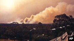Khói bốc lên từ đám cháy gần Springwood, phía tây Sydney, ngày 17/10/2013.