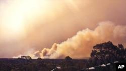 Asap membubung dari kebakaran dekat Springwood, bagian barat Sydney (17/10). (Foto: New South Wales Rural Fire Service)