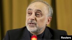 Menlu Iran Ali Akbar Salehi menyerukan pemimpin Gerakan Non-Blok menentang sanksi Barat terhadap Iran (foto: dok).