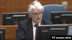 Radovan Karadžić iznosi žalbu na presudu Tribunala kojom je osuđen na 40 godina zatvora