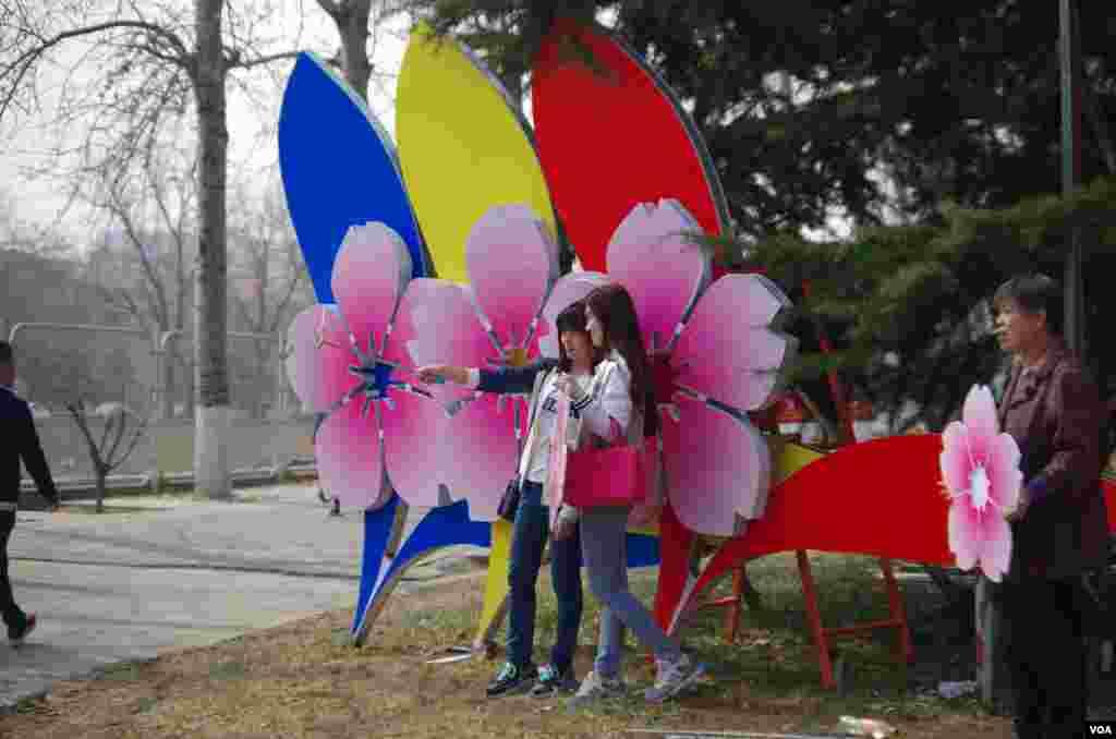 两名赏花女在樱花节宣传招牌前自拍留念 (曾谙 摄于2016年3月21日)