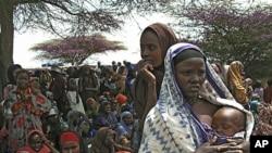 图为因干旱而无家可归的索马里人7月23日在摩加迪沙的临时营地等待配发食物