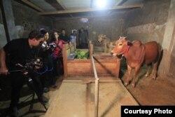 "Sutradara Livi Zheng dan kru saat syuting film ""The Bull Race"" di Indonesia (Dok: Livi Zheng)"