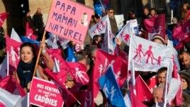 Người biểu tình phản đối hôn nhân đồng tính ở Marseille, Pháp, ngày 2 tháng 2, 2013.