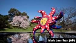 """The sculpture """"I Want to Fly to the Universe"""" by Japanese artist Yayoi Kusama is reflected in a pool at the New York Botanical Garden, Thursday, April 8, 2021 in the Bronx borough of New York."""