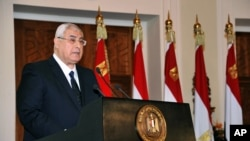 Interim President Adly Mansour speaks to government officials and members of the panel that drafted Egypt's amended constitution at the presidential palace in Cairo, Egypt, Saturday, Dec. 14, 2013.