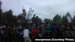 Faayilii - Hiriira mormii Oromiyaa, Hagayya 2016