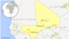 Militants Stage Deadly Raid in Central Mali