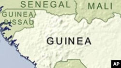 UN Report Blames Guinea Military for Killing Civilians