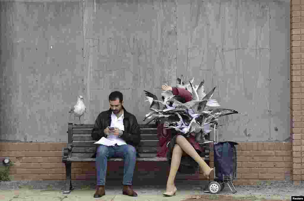 ស្នាដៃសិល្បៈ រូបចម្លាក់ និងក្រុមសម្តែងត្រូវបានឃើញនៅសួនពិពរណ៌សិល្បៈ «Dismaland» ដែលត្រូវបានរៀបចំដោយសិល្បករអង់គ្លេស Banksy នៅទីលាន Weston-Super-Mare នៅភាគនិរតី នៃចក្រភពអង់គ្លេស។