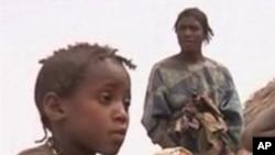 Une famille du Mali réfugiée au Niger.