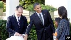 奥巴马总统赦免火鸡