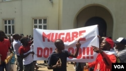 Demonstrators says Mugabe has nothing for Zimbabwe, Nov. 21, 2017. (S. Mhofu/VOA)
