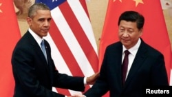 FILE - U.S. President Barack Obama (L) shakes hands with China's President Xi Jinping during a joint news conference at the Great Hall of the People in Beijing, Nov. 12, 2014.