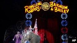 Seekor Gajah Asia tampil saat dikumandangkannya lagu kebangsaan dalam penampilan terakhir kalinya dalam Sirkus Ringling Brothers dan Barnum & Bailey, 1 Mei 2016, di Providence, Rhode Island. (Foto: dok).