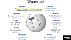 Capture d'écran du site Wikipedia.
