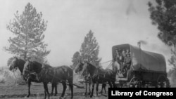 Covered Wagon of the Old West