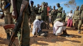 In this photo released by the AU-UN Information Support Team, alleged members of al-Shabab are blindfolded and guarded at a former police station by soldiers of the Somali National Army in Kismayo, southern Somalia, Oct. 3, 2012. (AP Photo/AU-UN IST, Stuart Price)