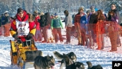 Mitch Seavey competes at the official start of the Iditarod Trail Sled Dog Race in Willow, Alaska, (File Photo).